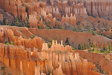 Rock formations, Queen Victoria, in the evening light, Queens Garden Trail, Sunset Point, Bryce Canyon National Park, Utah, United States of America, USA