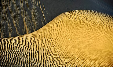 Ripple marks in the sands of the Mesquite Flat Sand Dunes, early morning light, Stovepipe Wells, Death Valley National Park, Mojave Desert, California, United States of America, USA