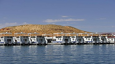 House boats for hire are moored in the harbour of Antelope Point Marina with Tower Butte at back, Lake Powell, Wahweap Marina, Glen Canyon National Recreation Area, Page, Arizona, United States, USA