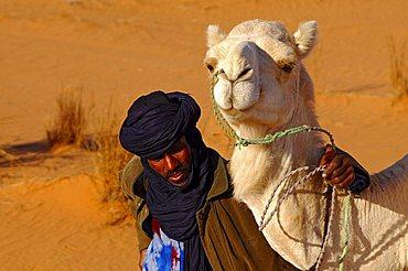 Tuareg nomade with white Mehari dromedary, Acacus Mountains, Libya