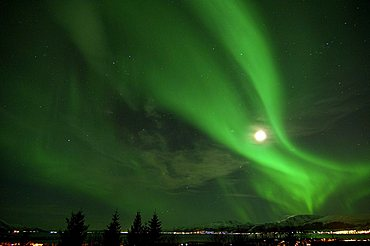 Northern lights, Aurora Borealis - 832-6987