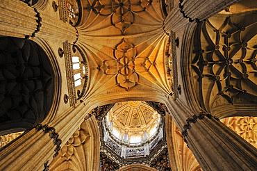 Interior of the gothic Cathedral of Salamanca, Unesco World Heritage Site, Castile and Leon, Castilia y Leon, Spain, Europe