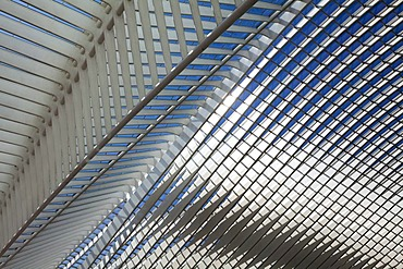Detailed view of the roof of the station concourse, Gare de Liege-Guillemins railway station, architect Santiago Calatrava, Liege, Luik, Wallonia, Belgium, Europe