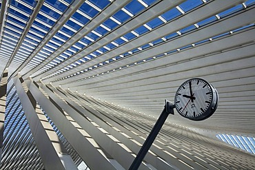 Roof detail with clock, Gare de Liege-Guillemin station by architect Santiago Calatrava, Liege, Wallonia or Walloon Region, Belgium, Europe