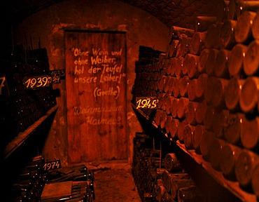 Very old wine cellar with a quote from Goethe, Ohne Wein und ohne Weiber holt der Teufel unsere Leiber, German for Without wine and women the devil will take our bodies!, Loisium World of Wine, Langenlois, Kamptal, Wachau, Lower Austria, Austria, Europe