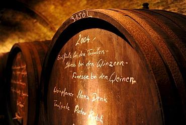 Old wine barrels in a wine cellar, Loisium World of Wine, Langenlois, Kamptal, Wachau, Lower Austria, Austria, Europe