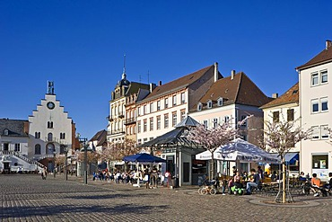 Marketplace with almond tree blossom, Landau, Deutsche Weinstrasse, German Wine Road, Pfalz, Rhineland-Palatinate, Germany, Europe
