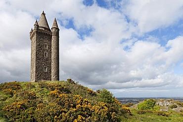 Scrabo Tower, Newtownards, County Down, Northern Ireland, Ireland, United Kingdom, Europe, PublicGround