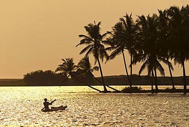 Boat on the backwaters, Poovar, Malabar Coast, Kerala, South India, India, Asia