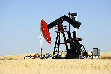 Oil pump pumping oil, Prairies, Saskatchewan, Canada
