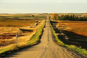 Straight road through the wide Prairies, Saskatchewan, Canada