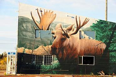 Moose, typical Canadian mural, Ontario, Canada