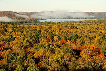 Colorful autumn forest from above, Algonquin Provincial Park, Ontario, Canada