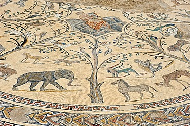 Ancient floor mosaic depicting Orpheus surrounded by animals, Roman ruins, ancient residential city of Volubilis, northern Morocco, Africa