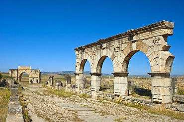 Roman ruins with triumphal arch of Caracalla, ancient residential city of Volubilis, northern Morocco, Africa