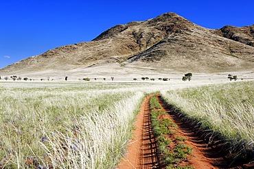 Dirt track in the Namib Desert, Namib Rand Nature Reserve, Namibia, Africa