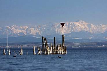 Remains of old jetty at Lake Constance with the peak of Mt Saentis, Alpstein massif, at back during foehn weather conditions, Baden-Wuerttemberg, Germany, Europe