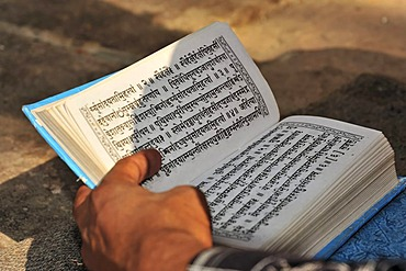 Holy scripture, temple, Varanasi, Benares, Uttar Pradesh, India, South Asia