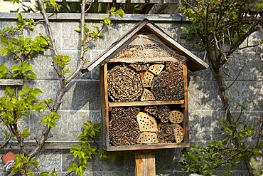 Insect nesting box, insect hotel