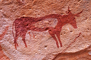 Painted cow, neolithic rockart of the Acacus Mountains or Tadrart Acacus range, Tassili n'Ajjer National Park, Unesco World Heritage Site, Algeria, Sahara, North Africa