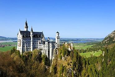 Schloss Neuschwanstein Castle, from Marienbruecke, Mary's Bridge, East Allgaeu, Allgaeu, Swabia, Bavaria, Germany, Europe