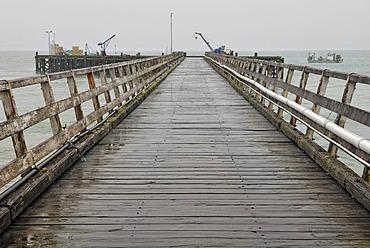Pier in the rain, Jackson Bay, Tasman Sea, South Island, New Zealand