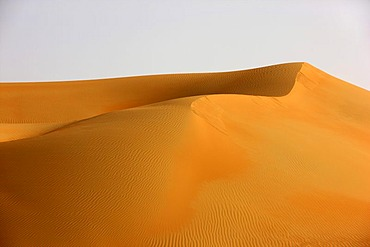 Red sand, dunes that may get over 200 meters high, in the desert Rub'al-Khali or Empty Quarter, Abu Dhabi, United Arab Emirates, Middle East