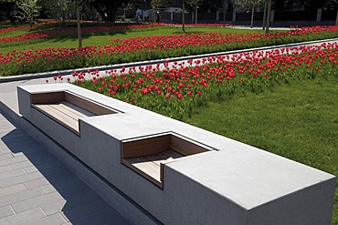 Modern bench and fields of tulips, Bundesgartenschau, BUGA 2011, federal garden show, Koblenz, Rhineland-Palatinate, Germany, Europe