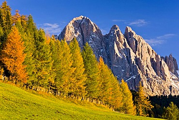 Villnoesstal or Val di Funes valley, in autumn, Odle Geisler massif at back, Puez-Geisler Nature Park, South Tyrol, Italy, Europe