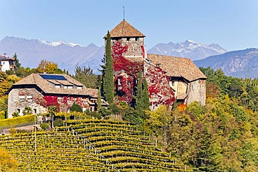 Warth Castle in front of the Texel Group Mountains, Appiano on the Wine Route, Alto Adige, Italy, Europe