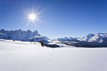 Ski hiker climbing Mt. Cima Bocche above the Passo Valles or Valle Pass, behind Mt. Colbricon, next to it Mt. Passo Rolle, Dolomites, Trentino, Alto Adige, Italy, Europe