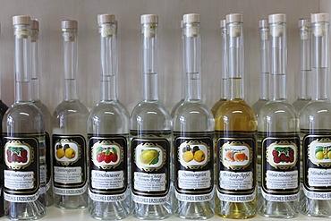 Bottles of spirits and brandy, Fraenkische Edelbrennerei Theiler distillery, Ebermannstadt, Franconian Switzerland, Upper Franconia, Franconia, Bavaria, Germany, Europe