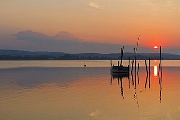 Fish traps in the first morning light, Iznang, Lake Constance, Konstanz district, Baden-Wuerttemberg, Germany, Europe