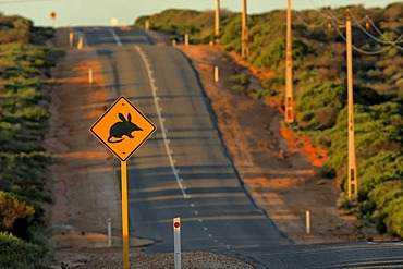 Bilby Crossing road sign, Shark Bay, Western Australia