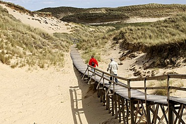 Two hikers in the dunes of Amrum, North Frisian Islands, Schleswig-Holstein, Germany, Europe