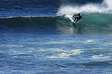 Surfer, Margaret River, Western Australia, Australia