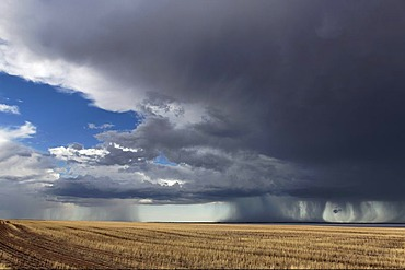 Storm over farmland and Yarra Yarra Lake, Carnamah, Western Australia, Australia