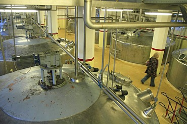 Stainless steel tanks to prepare the mash during the alcohol production, Aalborg Akvavit spirits factory, Aalborg, North Jutland, Denmark, Europe