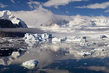 Icebergs, Gerlache strait, Antarctic Peninsula, Antarctica