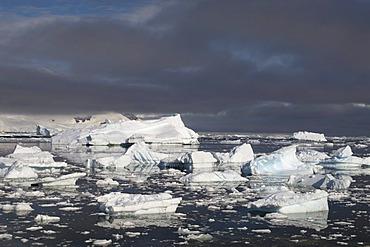 Icebergs, Neko Harbor, Gerlache strait, Antarctic Peninsula, Antarctica