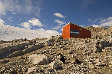 Emergency hut, Neko Harbor, Gerlache strait, Antarctic Peninsula, Antarctica