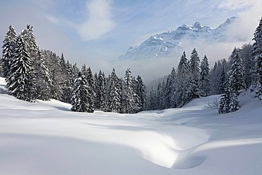 View to Mt. Saentis with high fog and snow, Alpstein, Switzerland, Europe