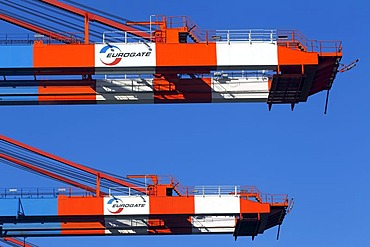 Container cranes for ships at the container terminal Eurogate, Eurokai in the port of Hamburg, Hamburg, Germany, Europe