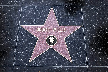 Star of Bruce Willis, Walk of Fame, Hollywood, Los Angeles, California, USA, America