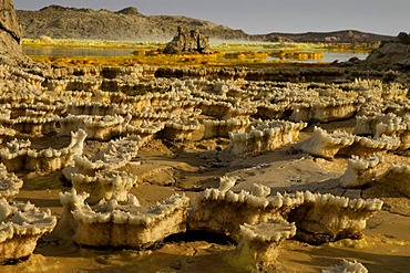 Sulphure formations, Dallol, Danakil Depression, Ethiopia, Africa