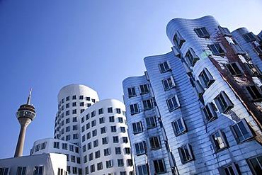 Neuer Zollhof buildings by American architect Frank Owen Gehry, Rheinturm tower at the back, Medienhafen port in Duesseldorf, North Rhine-Westphalia, Germany, Europe