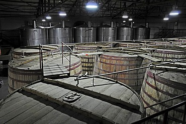 Wooden barrels, casks, Capel, Pisco distillery, national drink, Vicuna, Valle d'Elqui, Elqui Valley, La Serena, Norte Chico, northern Chile, Chile, South America