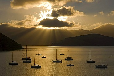 Sun beams over Akaroa Harbour and backlit boats in early morning light, Banks Peninsula, Canterbury region, South Island, New Zealand - 832-99379