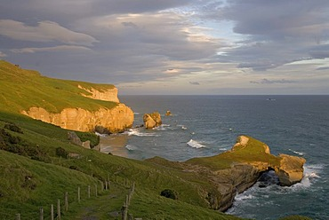 Coast of the South Pacific Ocean at Tunnel Beach illuminated by warm evening light, South Island, New Zealand