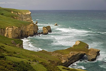 Coast of the South Pacific Ocean at Tunnel Beach, South Island, New Zealand